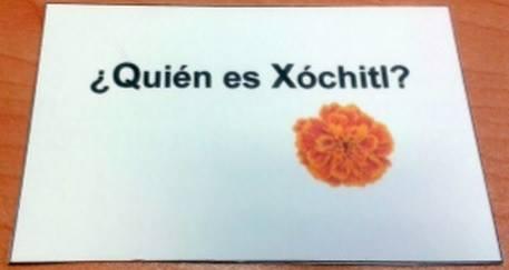 Xoch1